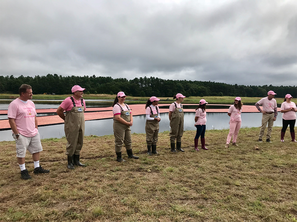 people in waders and wearing pink at Ocean Spray event