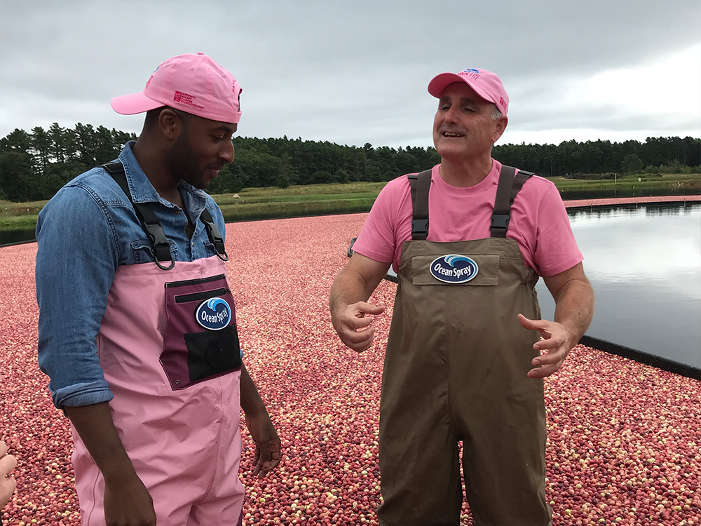 two guys talking in ocean spray cranberry bog