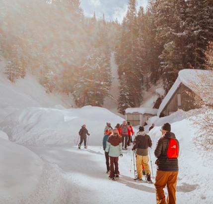 Snow show walk