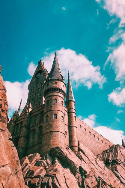 The Wizarding World of Harry Potter at Universal Studios is a branded experience.